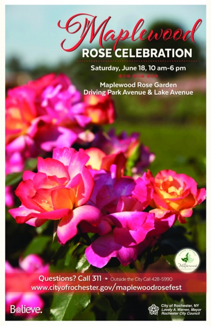 Rochester, NY Maplewood Rose Festival 2016